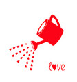 red watering can with red hearts water drops love vector image