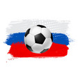 soccer football ball on colorful background vector image