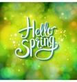 Hello Spring sparkling green card design vector image