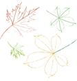contoured leaves vector image