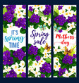 mother day and spring holiday floral greeting card vector image vector image