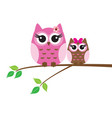 owls in the tree branch vector image vector image