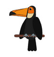 tucan bird cartoon vector image