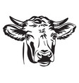 abstract contour portrait bull vector image vector image