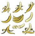 banana fruit set