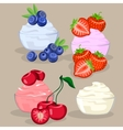 set of dessert with berries vector image vector image