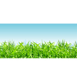 thick bright green grass on a background of blue vector image