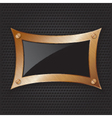 Bronze frame with screws on abstract metallic back vector image