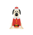 christmas mastiff dog wearing santa costume and vector image