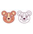 head a bear in color vector image