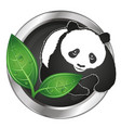 panda and green leaves symbol vector image