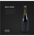 photorealistic bottle red sparkling wine on a vector image