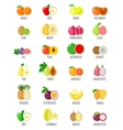 Set of flat fruits vector image vector image