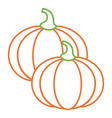 two pumpkin vegetable vegetarian diet vector image