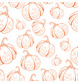 umpkin pattern on white vector image vector image
