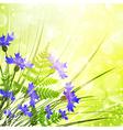 Cornflower vector image