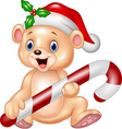 Cute baby bear holding Christmas candy vector image vector image