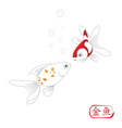 golden fish on white background vector image vector image