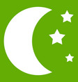 moon and stars icon green vector image vector image
