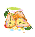 pears with colorful splashes vector image vector image