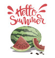 piece of watermelon with the inscription hello vector image