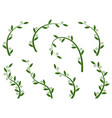 set green olive branches vector image