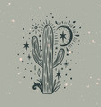 wild cactus desert arizona moonchild vintage vector image