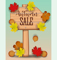 autumn sale banner paper colorful tree leaf maple vector image