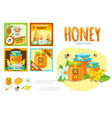 cartoon beekeeping infographic concept vector image