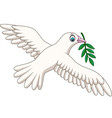 cartoon dove with an olive branch vector image