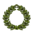 christmas new year a green branch of spruce in vector image vector image