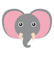cute little elephant on white background vector image
