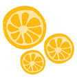 orange on white background vector image vector image