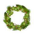 tropical and jungle exotic plants foliage wreath vector image vector image
