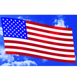 USA flag on sky vector image vector image