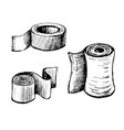toilet paper and towels vector image