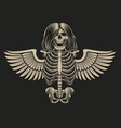 a skeleton with wings vector image vector image