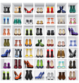 shoes on shelves vector image vector image