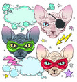 comic style colorful icons set cats the cat is vector image vector image