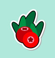 cowberry sticker on blue background colorful fruit vector image vector image