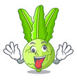 crazy fresh cabbage kohlrabi on the mascot vector image vector image
