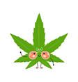 cute funny weed marijuana leaf character vector image vector image