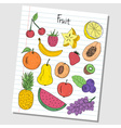fruit doodles lined paper colored vector image vector image