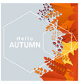 hello autumn with colorful leaves and fruits vector image vector image