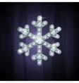 jewel snow silver vector image vector image