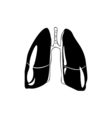 Lungs Human anatomy hand drawn isolated on a white vector image