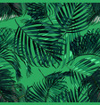 palm leaves silhouette on the green background vector image vector image