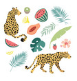 summer tropical graphic elements leopard cats vector image vector image