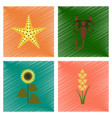 assembly flat shading style starfish vector image vector image