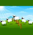 cute cartoon sheep collecti vector image vector image